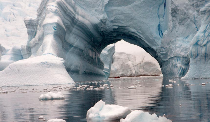 Utrolige naturoplevelser i Antarktis