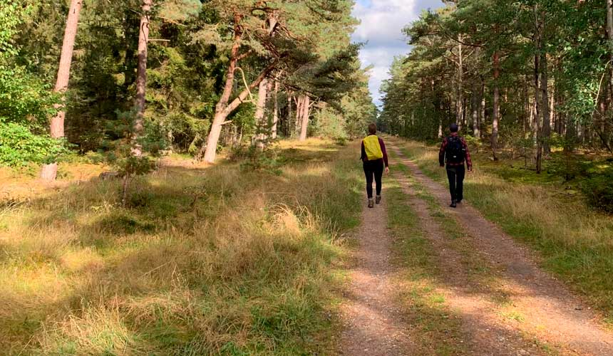 Nordkyststien til Tisvildeleje og videre til Hillerød