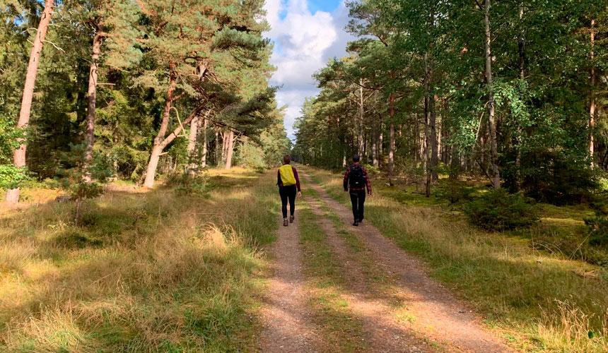 Nordkyststien til Lynæs og af Fjordstien til Frederikssund