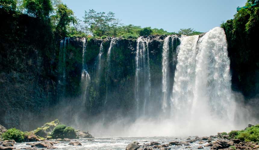 Mexico, verdens største fugletræk
