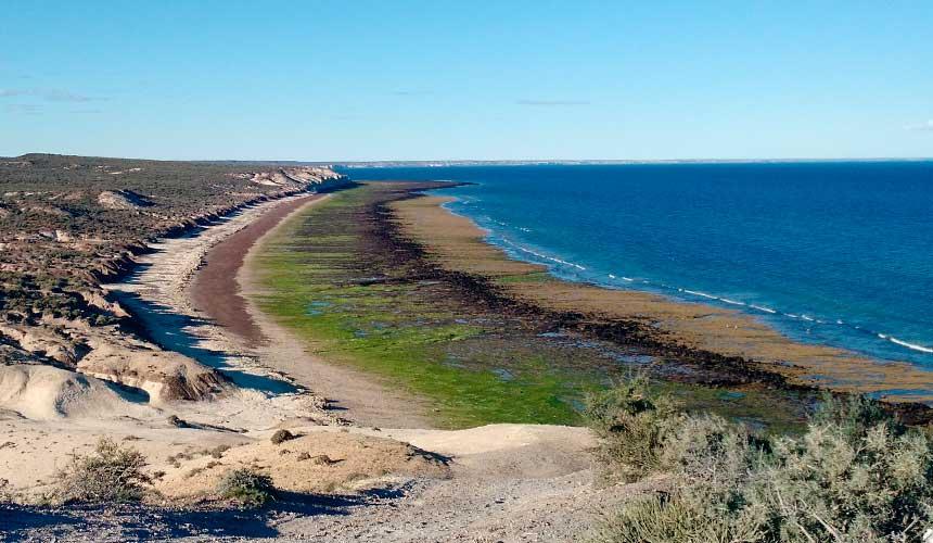Argentinas kyst